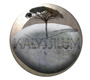 Association Kalyssilum